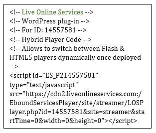 API Code snipet